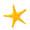 Seestern von Ede48