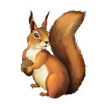 Eichhörnchen von Jermak