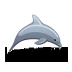 Kleiner Flipper von notused