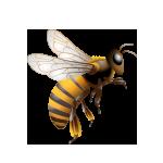 Flotte Biene from Wasserman